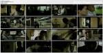 Trzy ma³py / ?? maymun (2008) PL.TVRip.XviD / Lektor PL